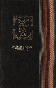 Joe Winter Poetry, Zimbabwe in August