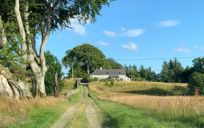 At Lagwyne Cottage